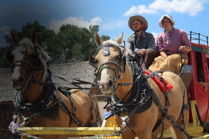 Team of Horses Pulling Zion Stage Line Stagecoach
