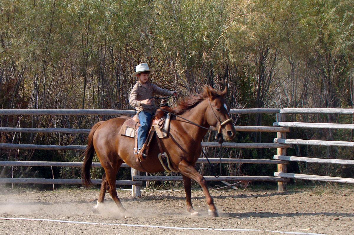 Red, Wheel Horse, Zion Stage Line